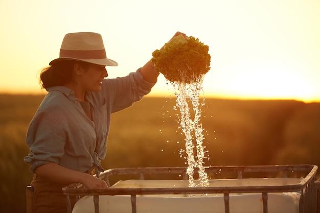 Zijaanzichtportret van glimlachende vrouwelijke landbouwer die groenten wast terwijl het verzamelen van oogst op veld in gouden zonsonderganglicht, exemplaarruimte