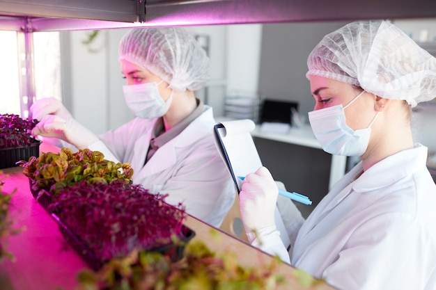 Zijaanzichtportret van twee vrouwelijke wetenschappers die plantmonsters onderzoeken terwijl ze in biotechnologie lab werken en op klembord schrijven, kopieer ruimte
