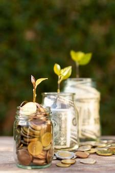 Zijdelings potten gevuld met geld en planten er bovenop