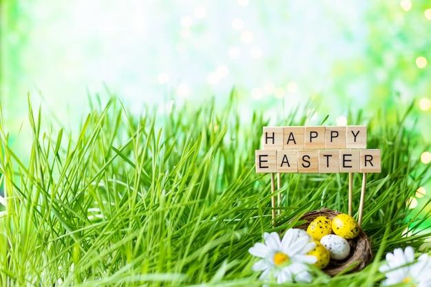 Zin happy easter gemaakt van letters, groen gras, paaseieren.