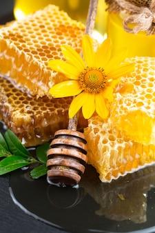Zoete bijenhoning in een compositie