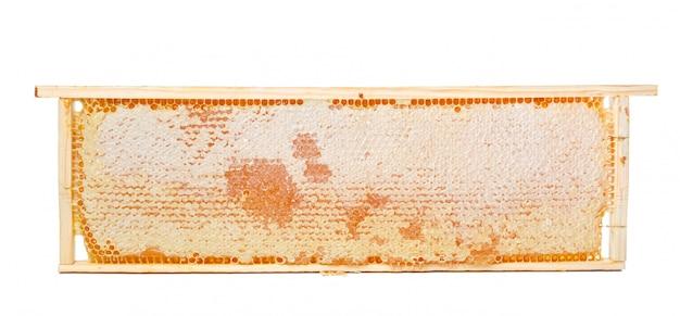 Zoete die honingraat op wit wordt geïsoleerd