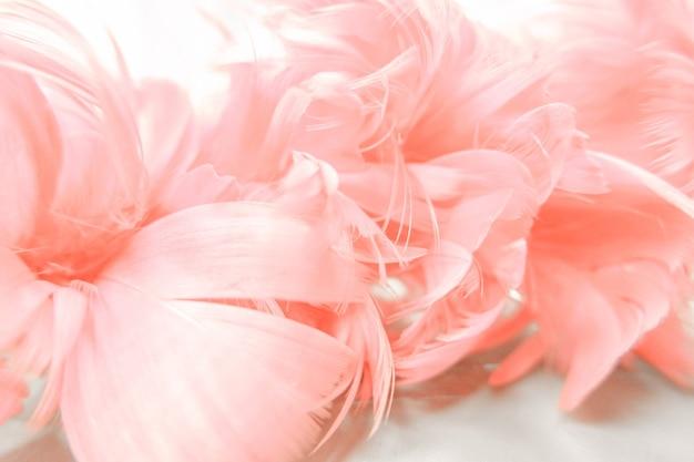 Zoete kleur rozen in vervagen stijl voor achtergrond.