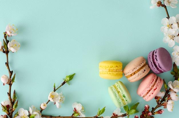 Zoete macarons of bitterkoekjes versierd met bloeiende abrikozenbloemen op pastel mint