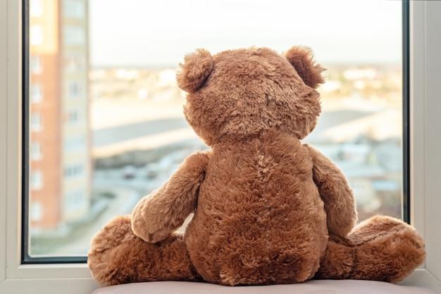 Zoete teddybeer die in vensters kijkt. ochtendzon licht. goedemorgen romantisch concept, achteraanzicht.
