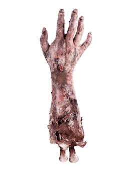Zombie of levende dode realistische hand, dag van de doden of halloween-thema, geïsoleerd wit oppervlak.