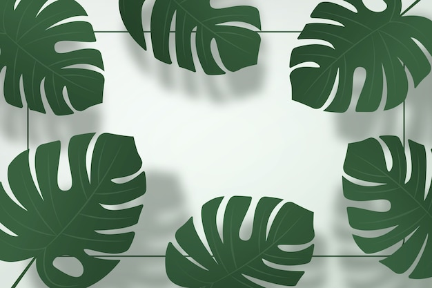 Zomer achtergrond. schaduw van monsterabladeren op groene muurachtergrond