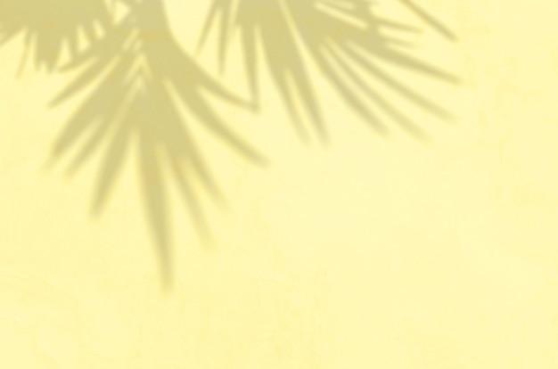 Zomer achtergrond van schaduwen tak bladeren op een muur