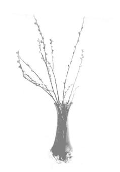 Zomer achtergrond van schaduwen tak bladeren op een witte muur. wit en zwart voor het overlappen van een foto of mockup.
