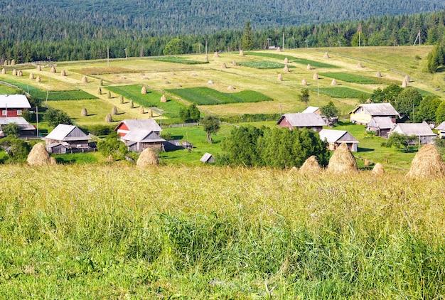 Zomer bergdorp rand met hooibergen op veld (karpaten, oekraïne)