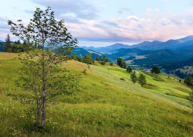 Zomer berglandschap met bloeiende graslanden vooraan