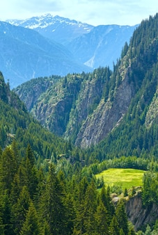 Zomer berglandschap met bos op helling (alpen, zwitserland)