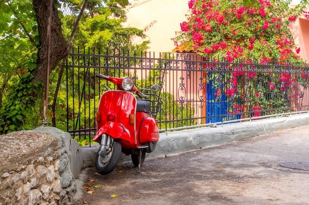 Zomer bloeiende tuin bij zonnig weer. bij het hek staat een rode scooter in retrostijl geparkeerd