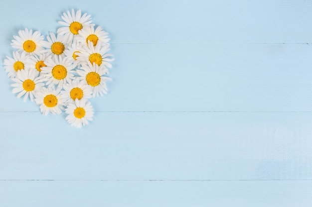 Zomer bloemen hart patroon met kamille daisy flower over blauwe vintage houten achtergrond