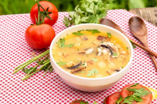 Zomer champignonsoep met peterselie, croutons, tomaten op een vakje van een geruit rood servet in de frisse lucht. vegetarische lunch in de natuur.