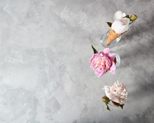 Zomer charmante bloemen pioenroos in een wafeltje kopjes bij glazen op een grijze achtergrond met plaats onder tekst. zomer concept.