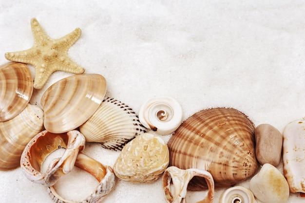 Zomer concept met schelpen, ster, zee kiezelstenen.