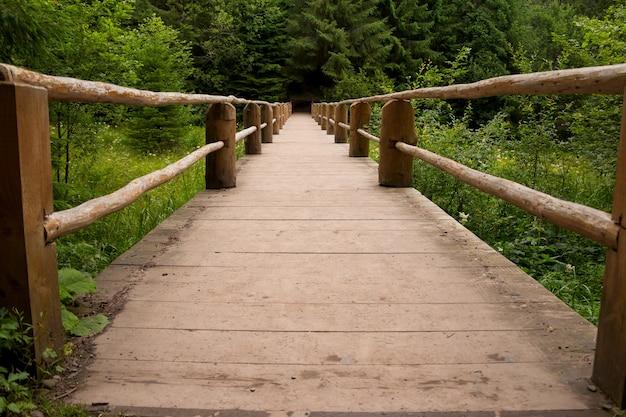 Zomer. de grassen en bomen. een kleine houten voetgangersbrug