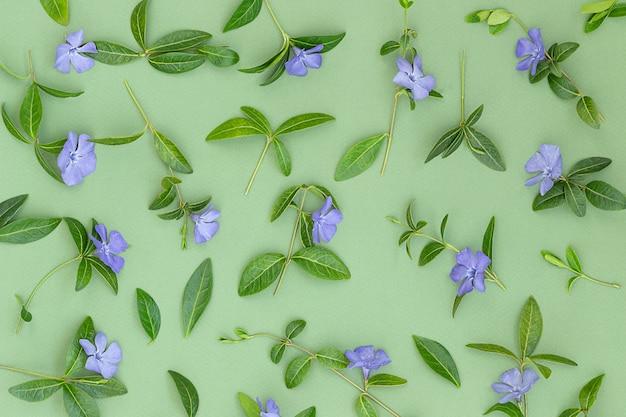 Zomer groene achtergrond met paarse bloemen en bladeren
