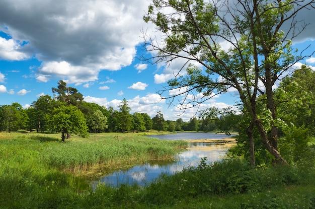 Zomer helder landschap met een meer, groen en wolken.