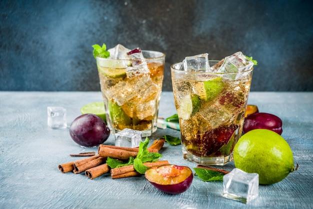 Zomer ijs verfrissend drankje. kaneel en pruim limonade cocktail, met verse limoen en munt