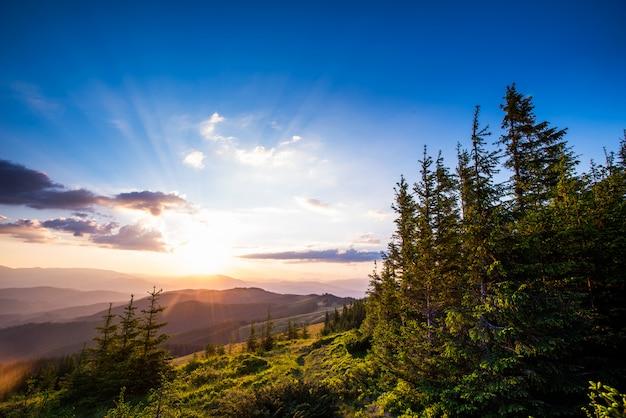 Zomer landschap in bergen
