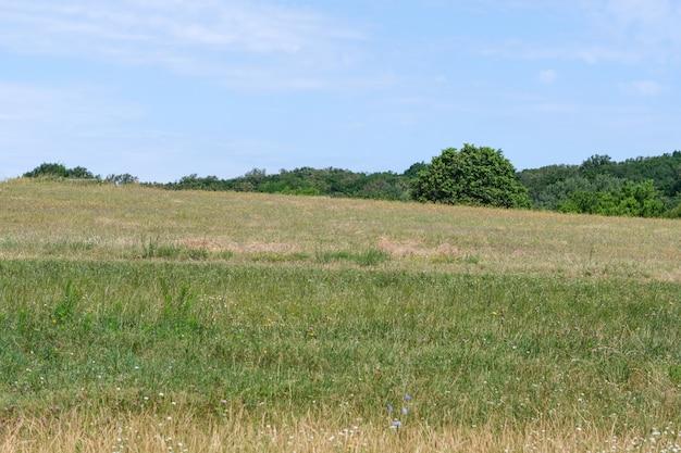 Zomer landschap met een heuvel