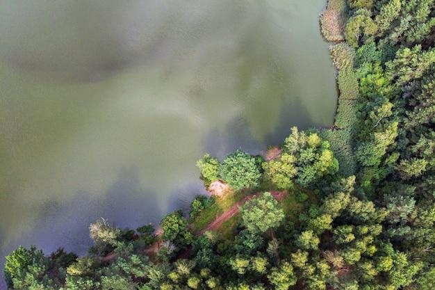 Zomer landschap rivier en dennenbos luchtfoto
