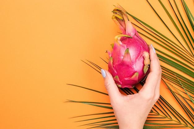 Zomer met drakenfruit en palmblad.