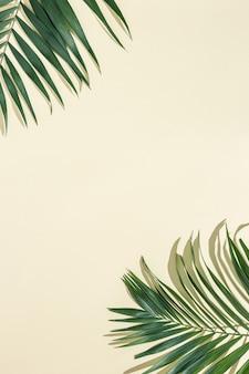 Zomer minimale achtergrond met natuurlijke groene palmbladeren met zonneschaduw op lichtgeel papier