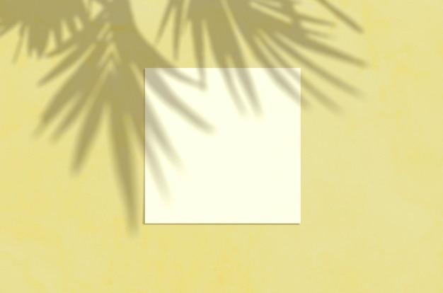 Zomer moderne zonlicht briefpapier mockup scène