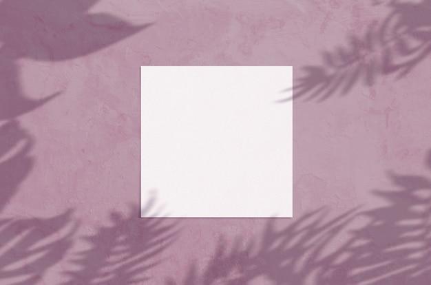 Zomer moderne zonlicht briefpapier