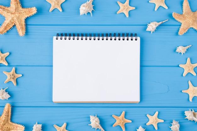 Zomer ontspannen concept. boven boven bovenaanzicht foto van lege notebook met schelpen en zeevissen rond geïsoleerd op blauwe houten achtergrond