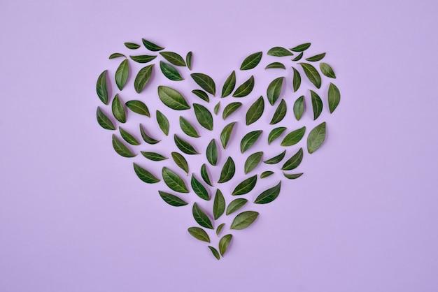 Zomer samenstelling. groene bladeren gerangschikt in hartvorm over blauwe achtergrond.