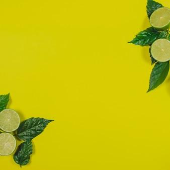 Zomer samenstelling met limes en lege ruimte