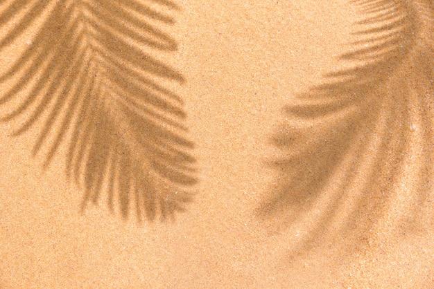 Zomer strand dag scène met tropische palmbladeren schaduw op zand achtergrond minimaal zonlicht tropica