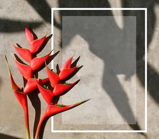 Zomer tropische bloemen met kopie ruimte op grunge achtergrond. creatieve lay-outsjabloon posters, flyers, brochures.