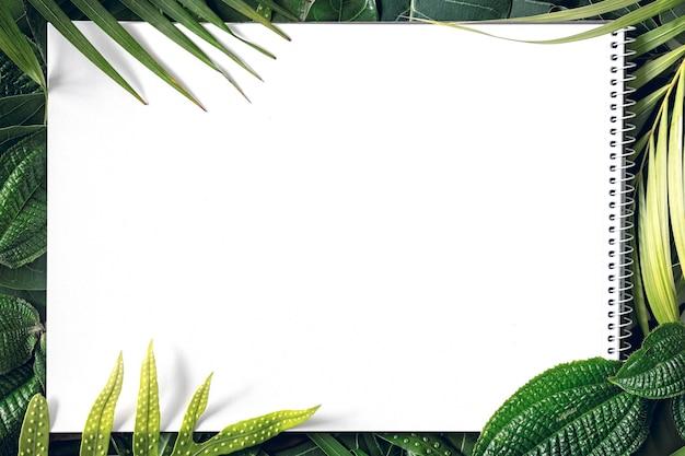 Zomer tropische mix verlaat achtergrond met blanco wit papier, bovenaanzicht