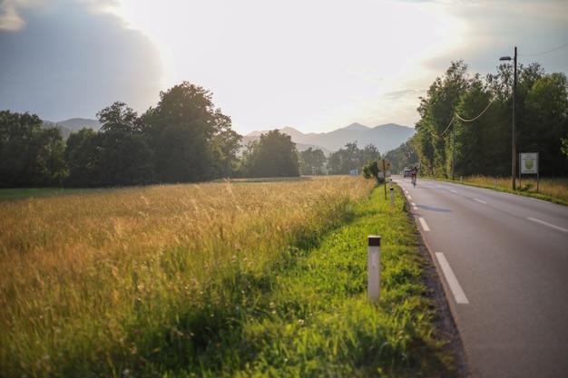 Zomer weide landschap. zonsondergang met een weg. wildflowers valley, een weg naast een veld