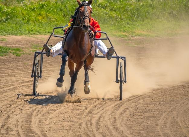 Zomer zonnige dag op de hippodroom. een paard dat aan een kar is vastgemaakt, rent over de baan