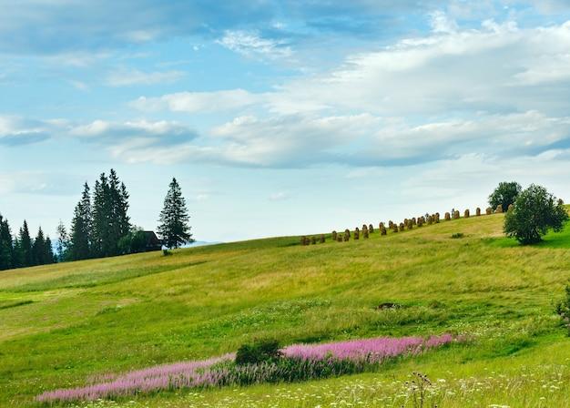 Zomeravond bergdorp rand met roze en witte bloemen en hooibergen op heuvel