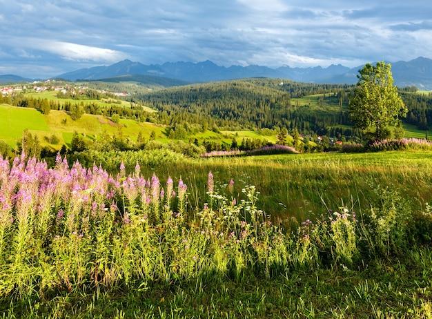 Zomeravond rand bergdorp met roze bloemen vooraan en tatra-gebergte achter