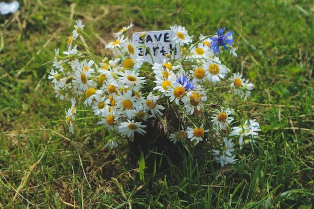 Zomerboeket van wilde bloemen op een groene achtergrond, red de aarde