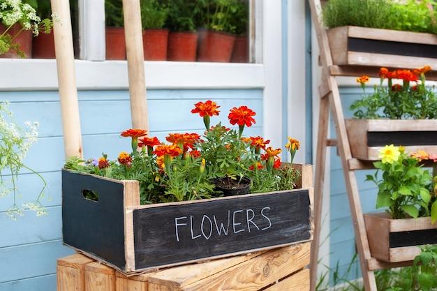 Zomerdecor veranda met tagetes bloemen houten veranda van huis met planten
