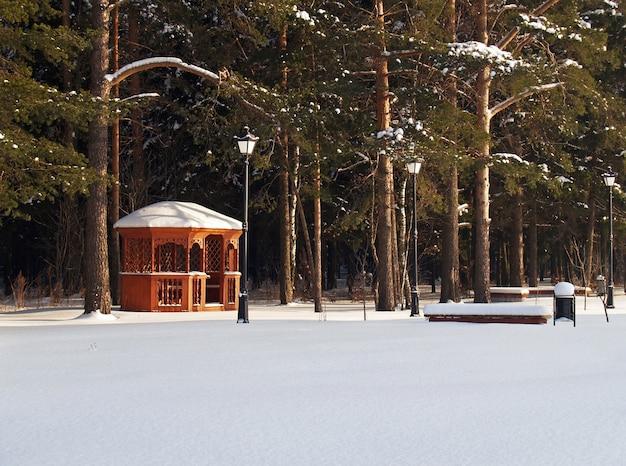 Zomerhuis in winter bos