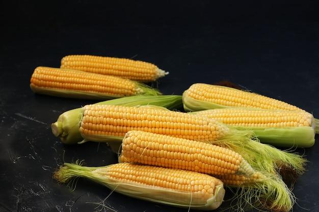 Zomeroogst van maïs, verse maïs op de kolven bevindt zich op een donkere ondergrond in willekeurige volgorde