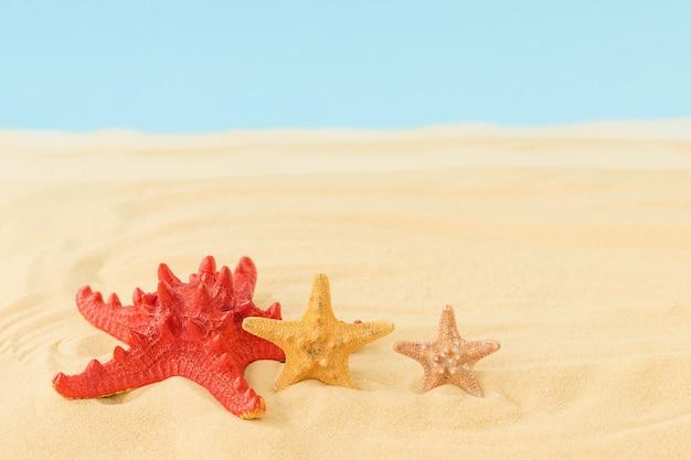Zomeroppervlak met drie zeesterren op het strand