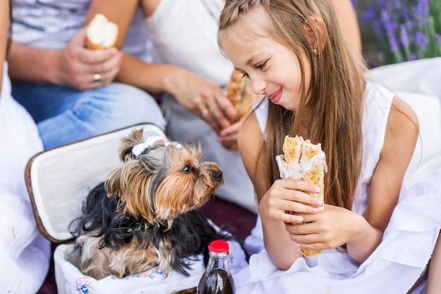 Zomerpicknick in de natuur. het meisje voedt de hond ...