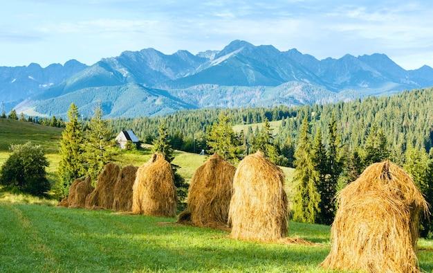 Zomerrand van een bergdorp met hooibergen en tatra-gebergte achter polen
