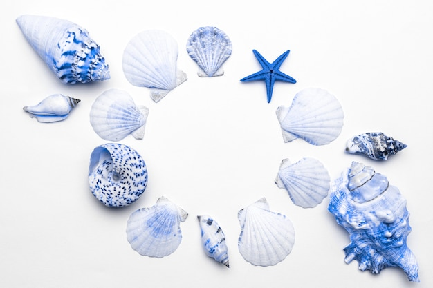 Zomervakantie achtergrond. frame van trendy aquamarijn licht blauwe pastelkleur schelpen, zeester geïsoleerd op een witte achtergrond. de zomer komt eraan concept